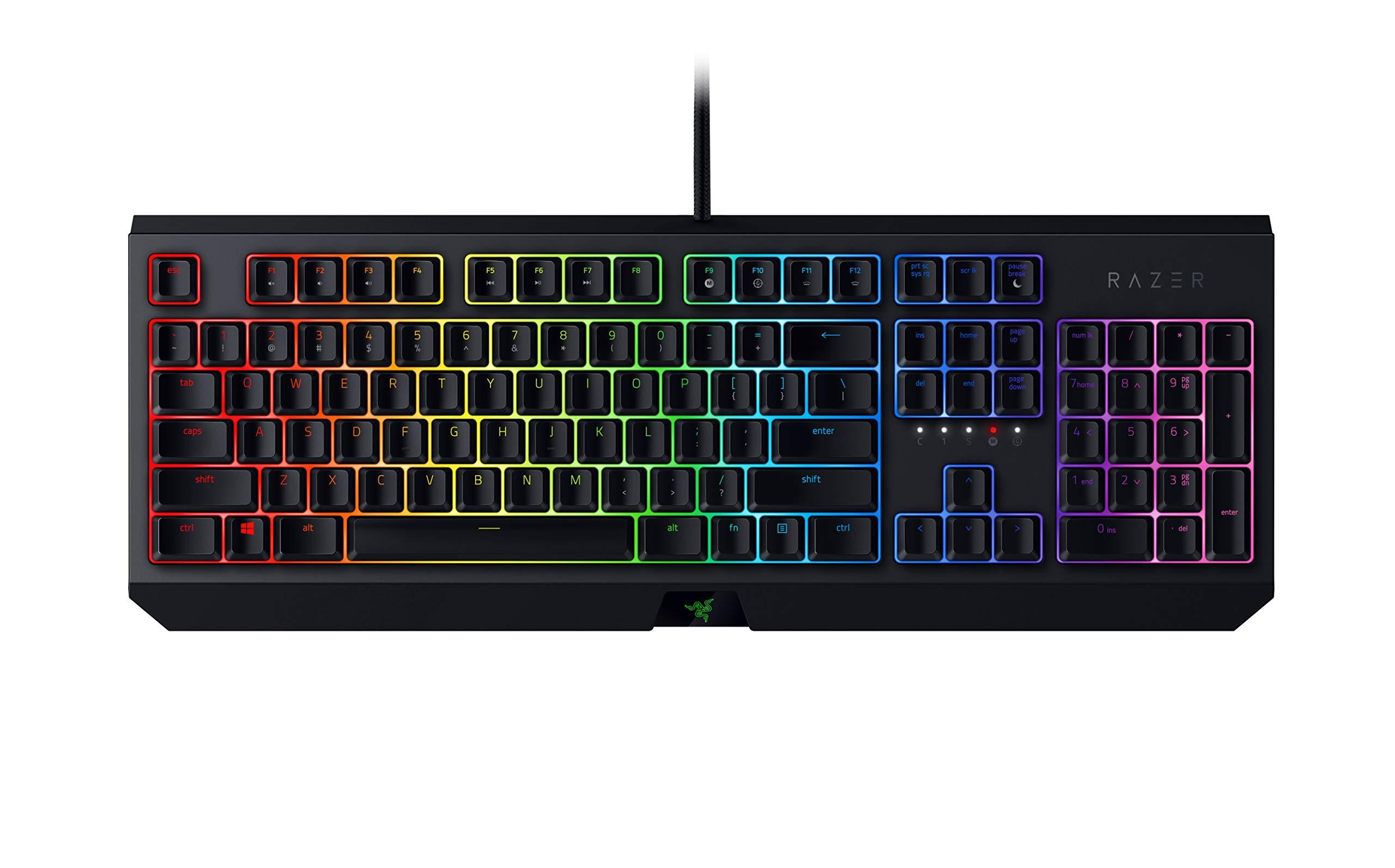 Razer BlackWidow Mechanical Gaming Keyboard 2019: Green Mechanical Switches - Tactile & Clicky - Chroma RGB Lighting - 10 Key Anti-Ghosting - Programmable Macro Functionality