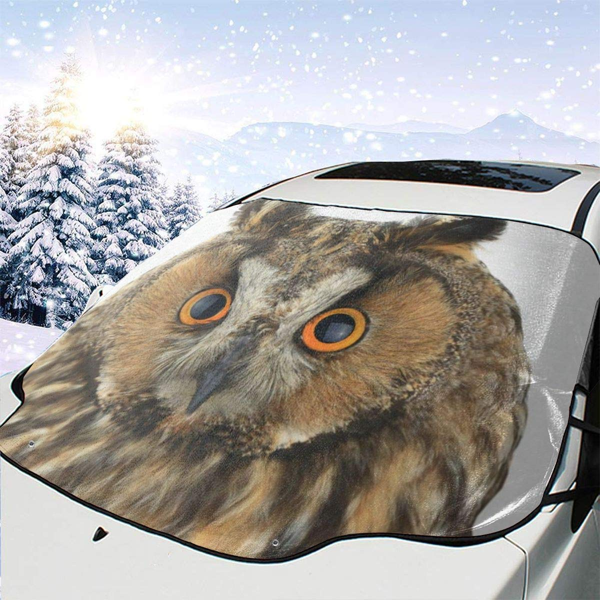 Amazon com: Portrait Owl On White Windshield Sun Shade for