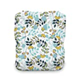 Thirsties One Size All In One Cloth Diaper, Snap