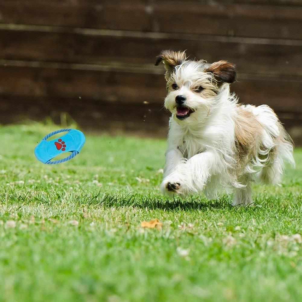 Ciaoed Hundespielzeug für Aggressive Hundekauen-Spielwarengeschenke Interessanter Hund wechselwirkendes Spielwaren für Kleine mittlere große