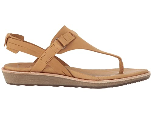 20a30b63588c Image Unavailable. Image not available for. Color  Teva Encanta Thong - Women s  Casual Tan