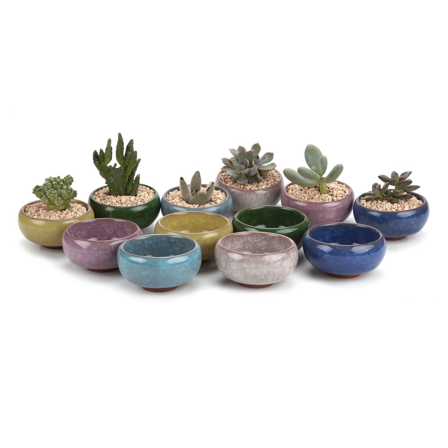 T4U 2.5 Inch Ceramic Ice Crack Zisha Serial succulent Plant Pot Cactus Plant Pot Flower Pot Container Planter Full colors Package 1 Pack of 12 by T4U