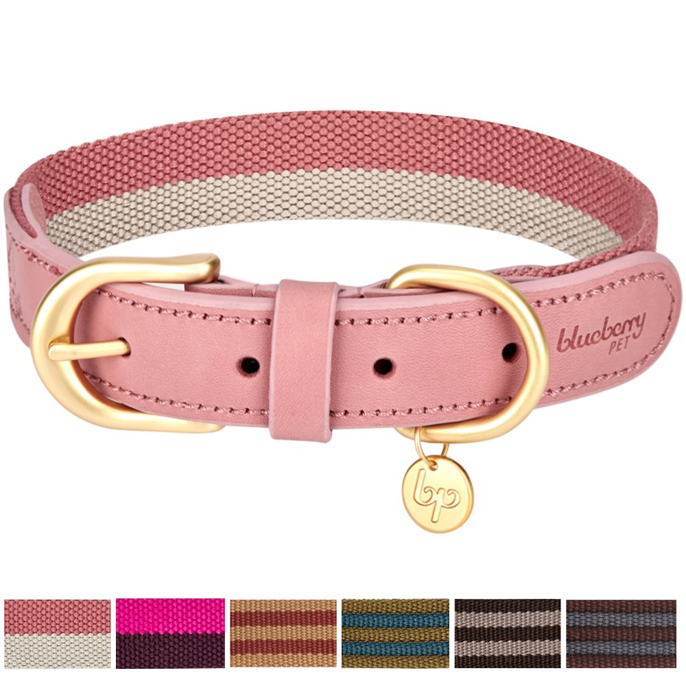 Blueberry Pet Multi-colored Stripe Collection - 3M Reflective Regular, Martingale Collars