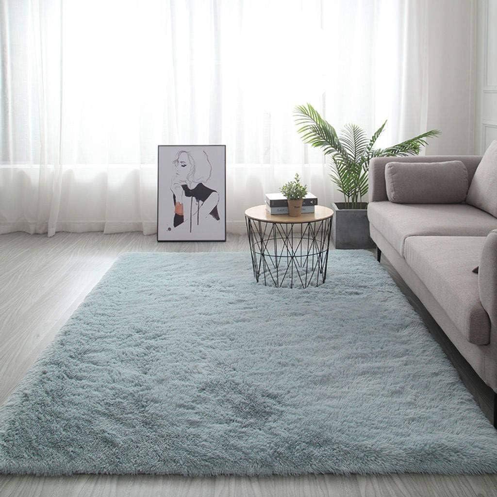 Ultra Soft Fluffy Nursery Rug, Modern Bedroom Shaggy Area Rugs Home Decorative Carpets for Girls Room Throw Rug-60x160cm(24x63inch)-B