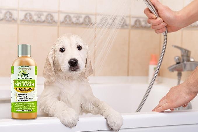 Pro Pet funciona hipoalergénico 100% orgánico Natural y de mascota Perro Champú + Acondicionador de harina de avena con Aloe para perros, cats-medicated ...
