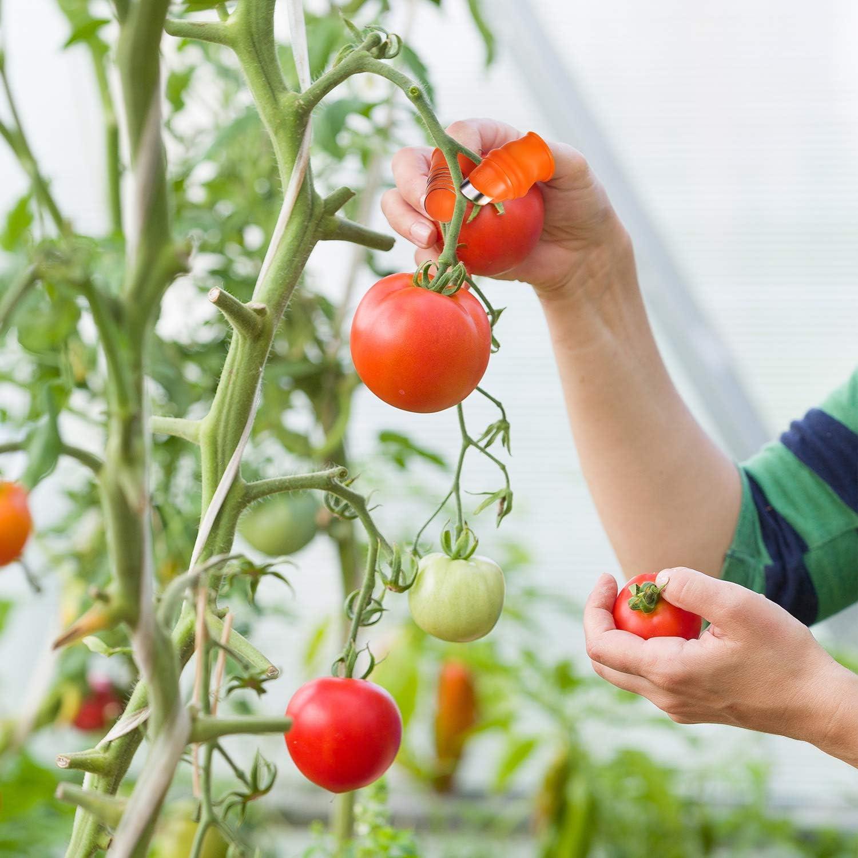 Coltello da Pollice in Silicone da Giardino Guanti da Giardinaggio Strumenti di Raccolta Frutta in Silicone con Copertura per Dita in Silicone Coltello da Giardino per Tagliare Verdura 6 Pezzi