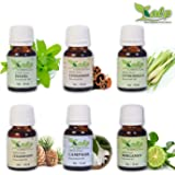 Kalp Pack Of 6 Essential oils/Lemongrass Oil, Lemon Oil, Peppermint Oil, Eucalyptus Oil, Citronella Oil, Lavender Oil