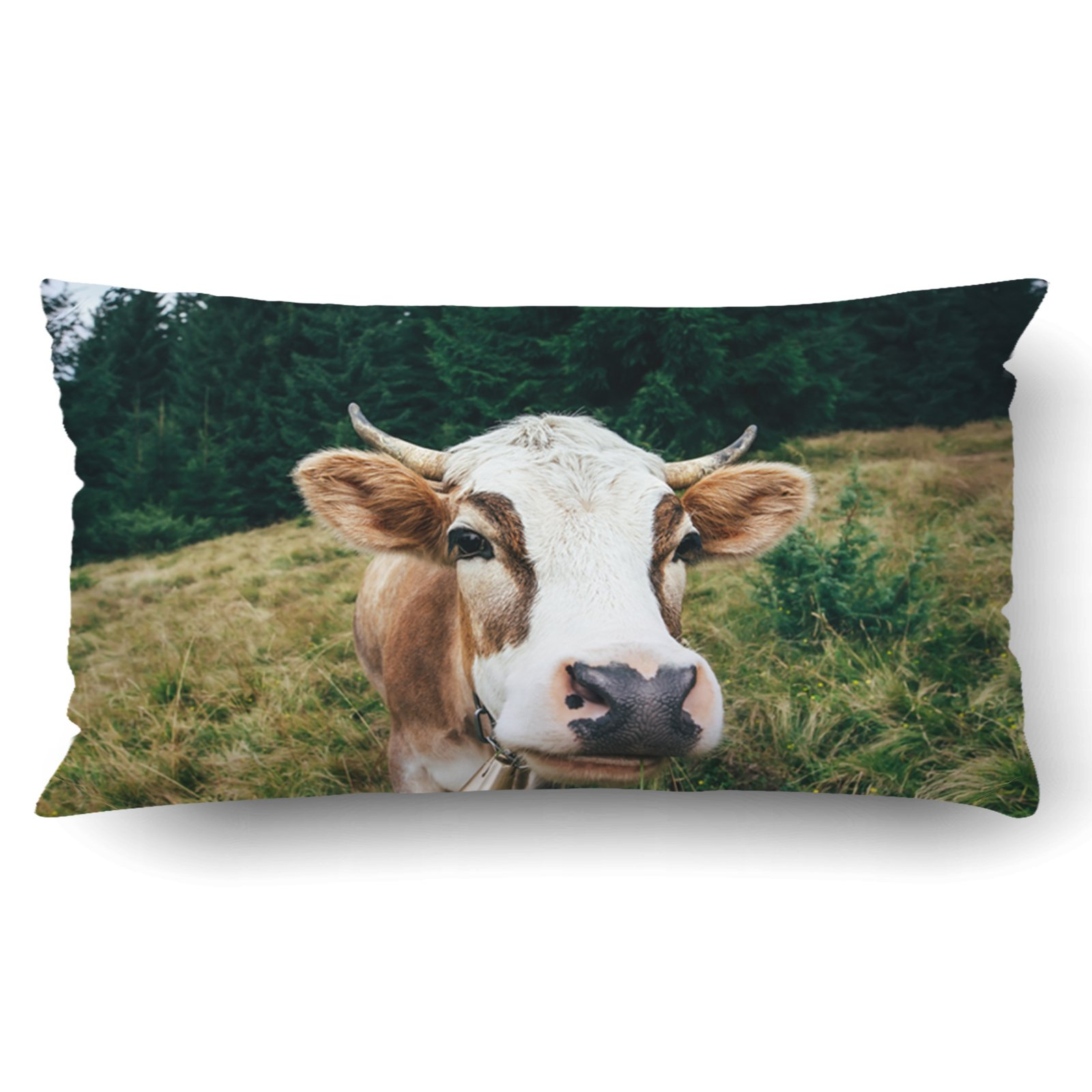 Emvency Pillow Covers Decorative Funny Cow On A Meadow In Forest Animal Bulk With Zippered 20x36 King Pillow Case For Home Bed Couch Sofa Car One Sided