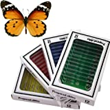 48 Plastic Prepared Microscope Slides Kit BONUS Butterfly Specimen for Kids Student Science STEM Education