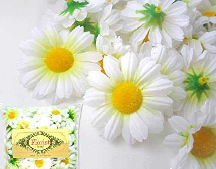 Amazon 24 silk white gerbera daisy flower heads gerber 24 silk white gerbera daisy flower heads gerber daisies 175quot mightylinksfo