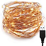 XERGY 10 Meter 100 LED's Fairy Decoration String USB Powered Copper Warm White -Home DIY Decoration Indoor/Outdoor