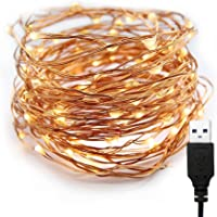 XERGY 10 Meter 100 LED's Fairy Decoration String USB Powered Copper Warm White -Valentine Day Decoration