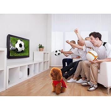 Amazon.com : SymbolLife Trajes Perro Disfraz Gato Ropa para Perros Camiseta Fútbol Copa del Mundo FIFA Copa de Europa Jersey acariciar : Pet Supplies