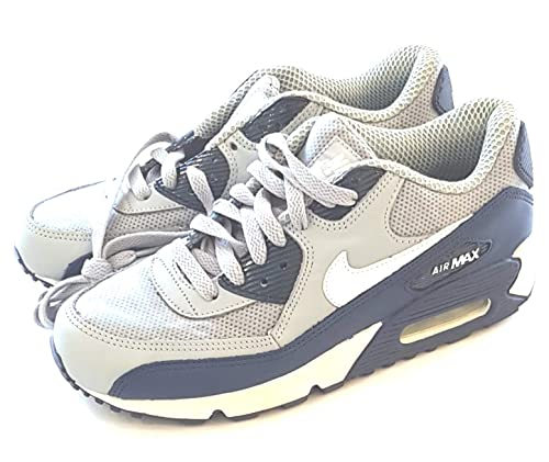 low priced 5fea1 d75fa Nike Air Max 90 Trainers Shoes Silver - Blue 303994 012 Men s UK 6, EUR