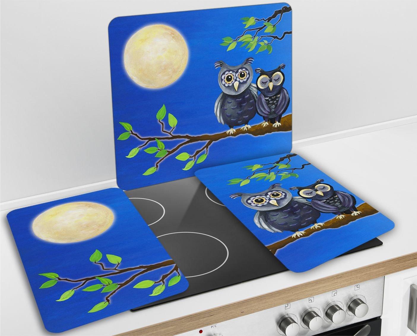 Wenko 2521455500 Cubiertas de Cocina Universal Lechuza - Juego de 2 Piezas para Todos los Tipos de cocinas, Vidrio - Vidrio endurecido, 30 x 1,8-4,5 x ...