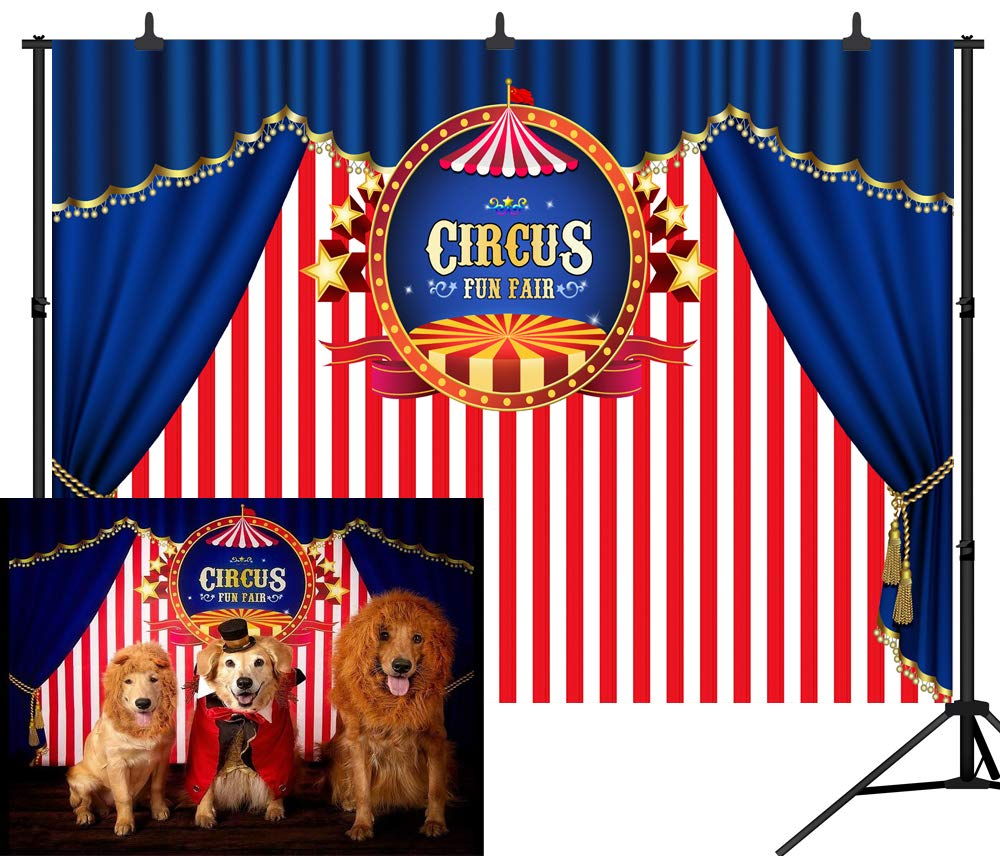 dephoto 7 x 5ft (210 x 150 cm) ブルーカーテンCircus Stratus Playground Fun Fairカーニバルカルーセルパーティーバナー新生児シャワーブースシームレスなビニール写真新生児Backdrop写真背景Studio pgt138 10X8FT(300X240CM)  B07CV4B1L4