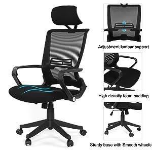 Ergonomic Mesh Back Office Task Chair Molded Foam W/Adjustable Lumber Headrest, Folded Mesh Back, Designer Chair ANSI/BIFMA TB117-2013 (Kairo Black with Headrest)