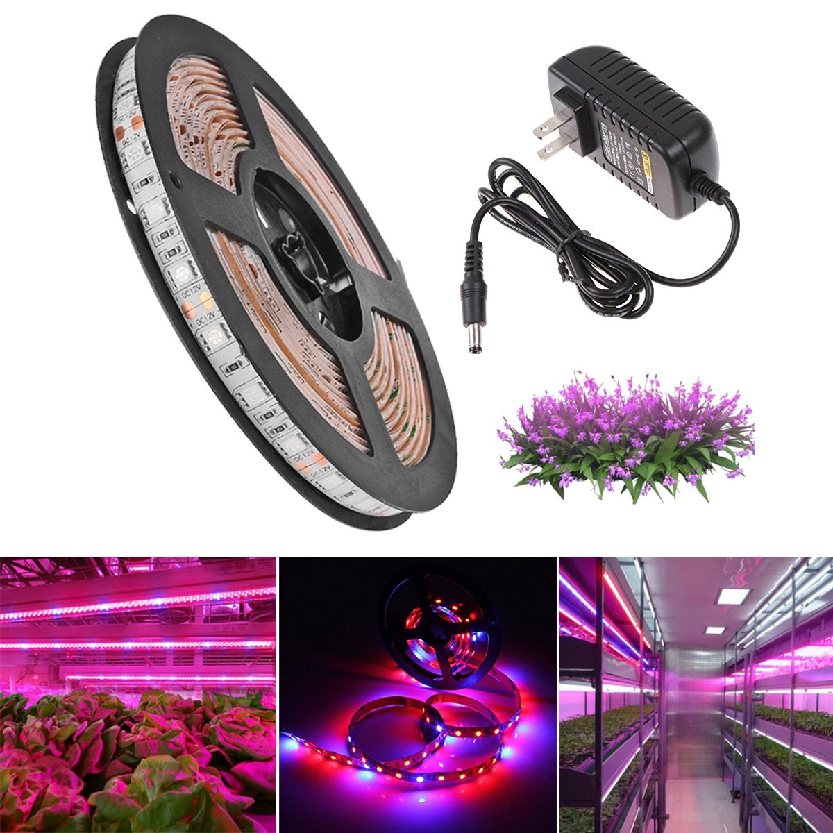 SJP LightLED Plant Grow Strip Light Kit(Power Adapter Included),Full Spectrum SMD 5050 Red Blue 4:1 Lighting Ribbon For Indoor Aquarium Greenhouse Hydroponic Plants Flower Growing (5M)