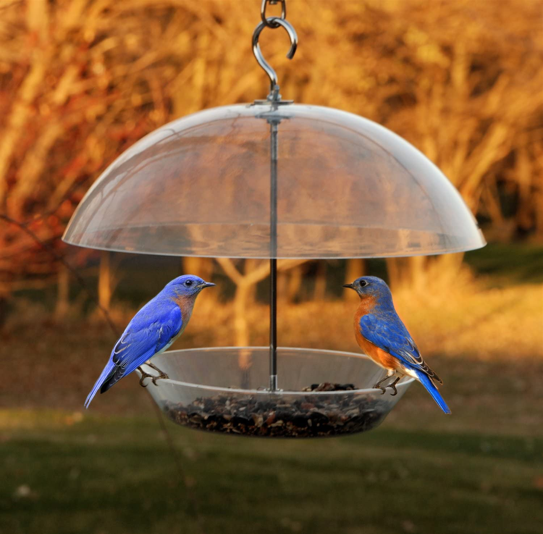 Woodlink NABBFDR Audubon Bluebird Feeder