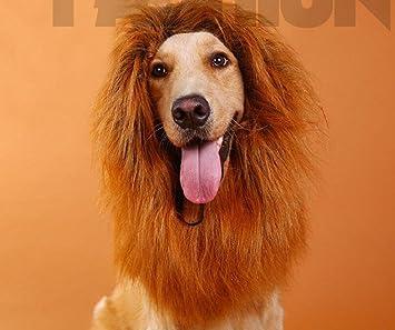 WYXIN Disfraz de mascota Perro León Mane Lion Mane peluca Lion Mane Disfraz de Lion Mane
