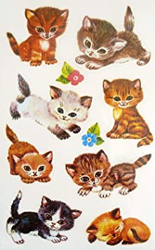 Siberian Tabby Kitten Cat Reading Book Puffy Bubble Scrapbooking Sticker Set