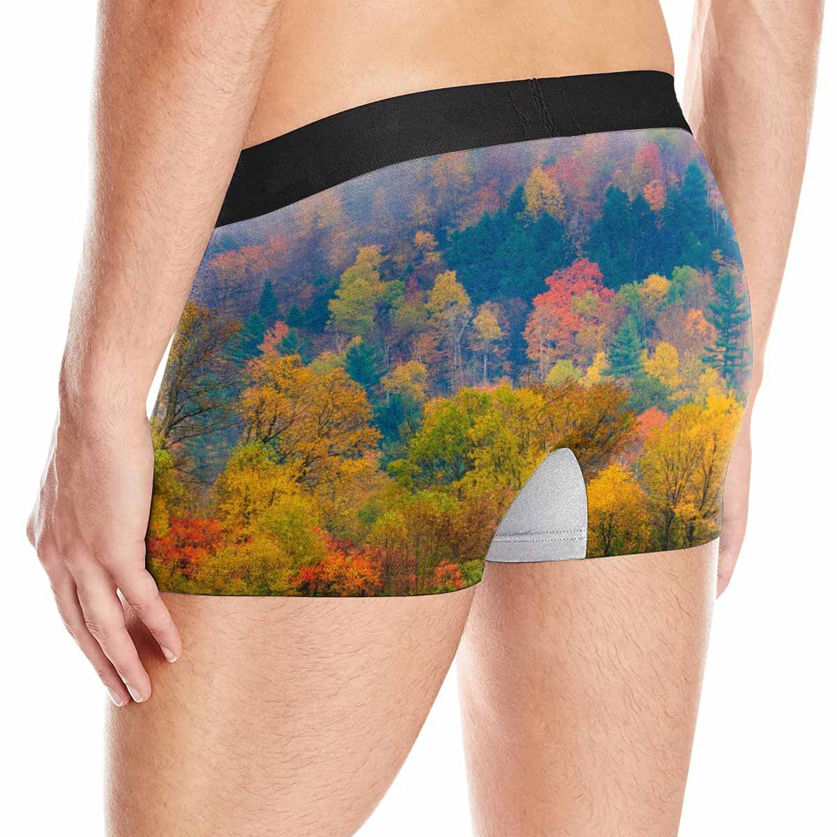 USA XS-3XL Stowe Vermont INTERESTPRINT Mens Boxer Briefs Underwear Field of Trees During Fall Foliage