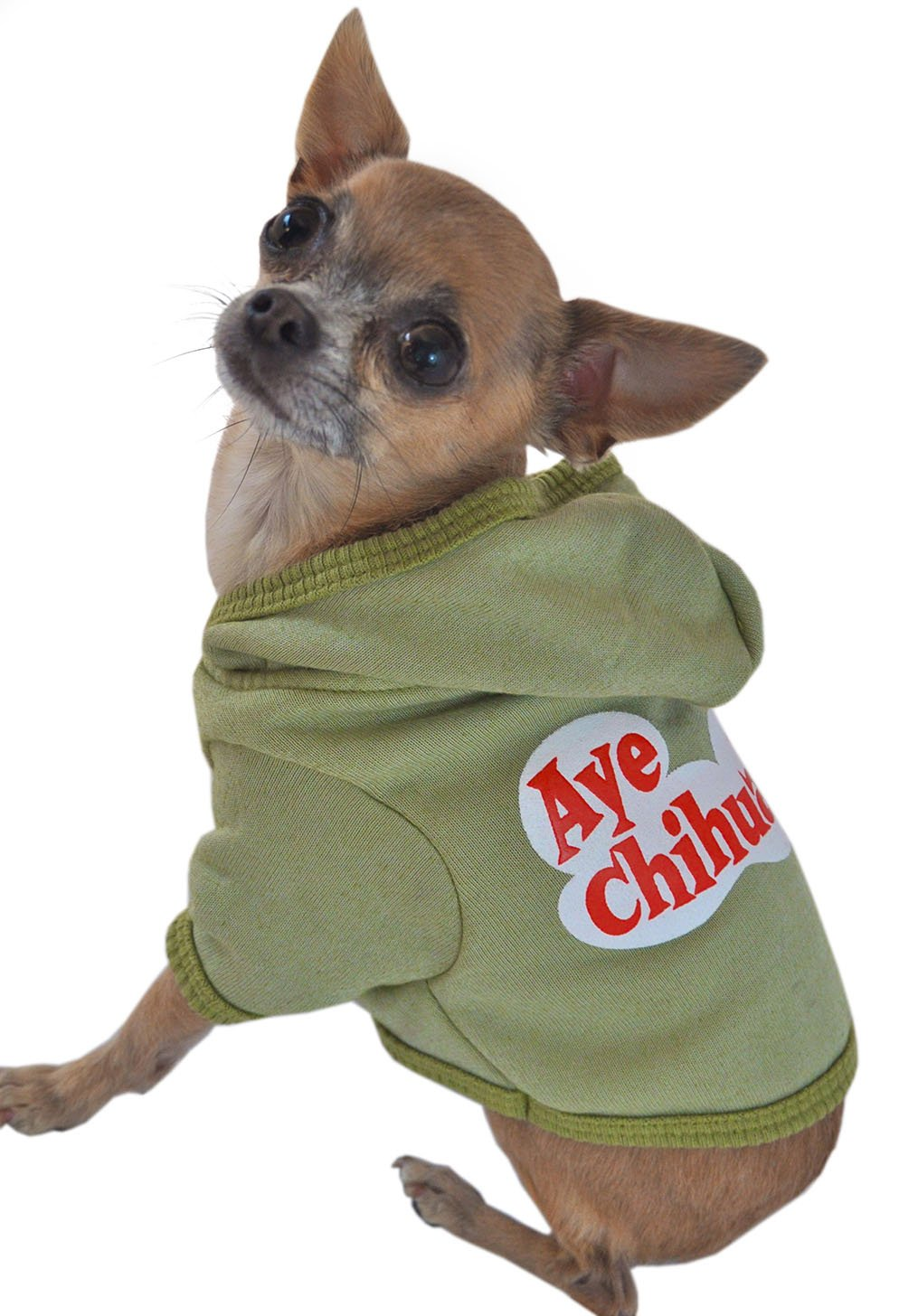 Ruff Ruff and Meow Dog Hoodie, Aye Chihuahua, Green, Small by Ruff Ruff and Meow