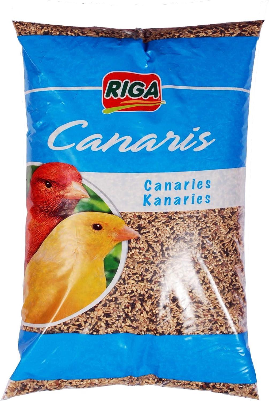 Riga - Mezcla para Canarios (4 x 1 kg)