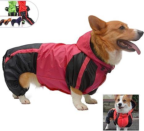 Waterproof Walking Suit for Dachshunds !