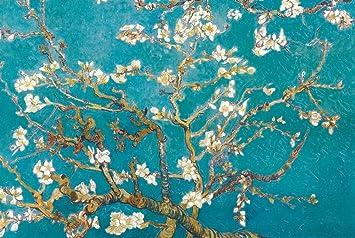 Got my Vans Gogh Almond Blossoms : Vans
