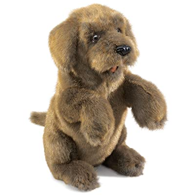 Folkmanis Sitting Dog Hand Puppet: Toys & Games