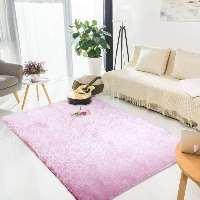 LORSEX Super Comfy Indoor Fluffy Rug Plush Velvet Area Rugs Carpet for Bedroom Living Room Dorm Home Decor Large Nursery Shag Rug Floor mats for Boys and Girls (Pink 4x6ft)