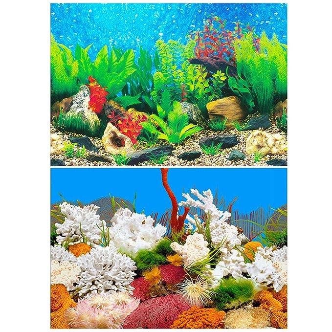 Amakunft - Adhesivo de Fondo para Acuario, Doble Cara, Papel Pintado, Fondo de pecera (Plantas de Agua y Roca coralina): Amazon.es: Productos para mascotas