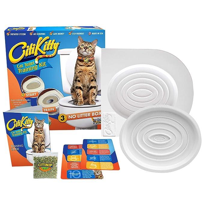 CitiKitty Cat Toilet Training Kit: CitiKitty: Amazon.es: Productos para mascotas