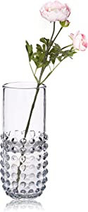 """CONVIVA Glass Vase for Home Decor Thick Glass Cylinder Vases with Touchable Bubbles Flower Vase Centerpiece for Dining Room Kitchen Office Table Decoration, Clear 11.4"""" H"""