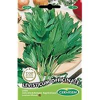 Germisem Levisticum Officinale Semillas de Lovage 1 g (EC1124)
