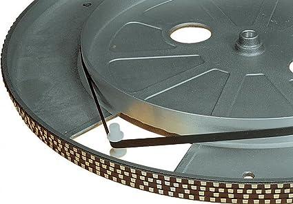 Electrovision - Correa para tocadiscos (205 mm), color negro