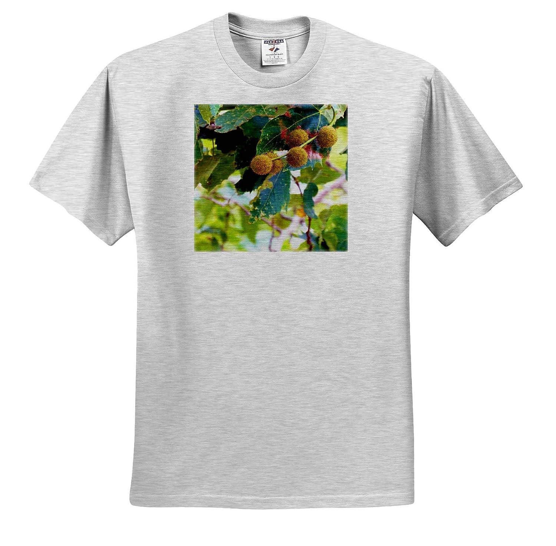3dRose Jos Fauxtographee Pom Pom Like Blossoms on a Tree with Green Leaves Pom Pom Tree T-Shirts