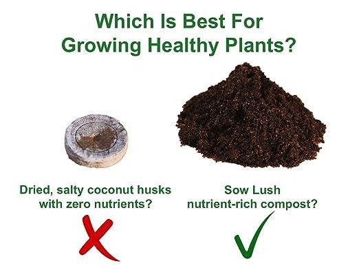 Sow Lush Set de Cultivo de Semillas para Ensalada «Scrumptious ...