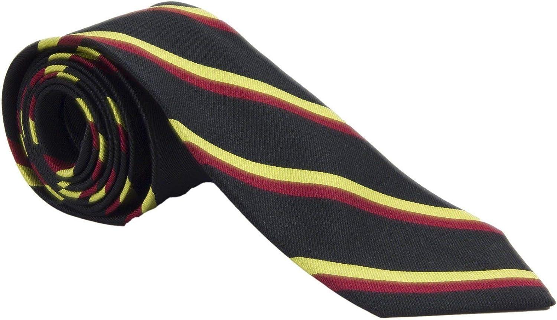 1st Battalion Royal Anglian Vikings And Royal Norfolk Silk Tie Amazon Com