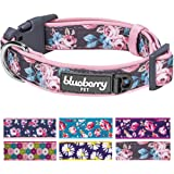 Blueberry Pet 6 Patterns Soft & Comfy Floral Prints Padded Dog Collar, Matching Leash Harness Available Separately