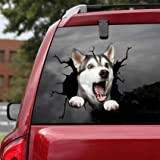 Zyooh Funny Crack Car Sticker, 3D Window Decal Funny Animal Pet Decorations for Puppy Lovers,Multiple Styles Pet Sticker for