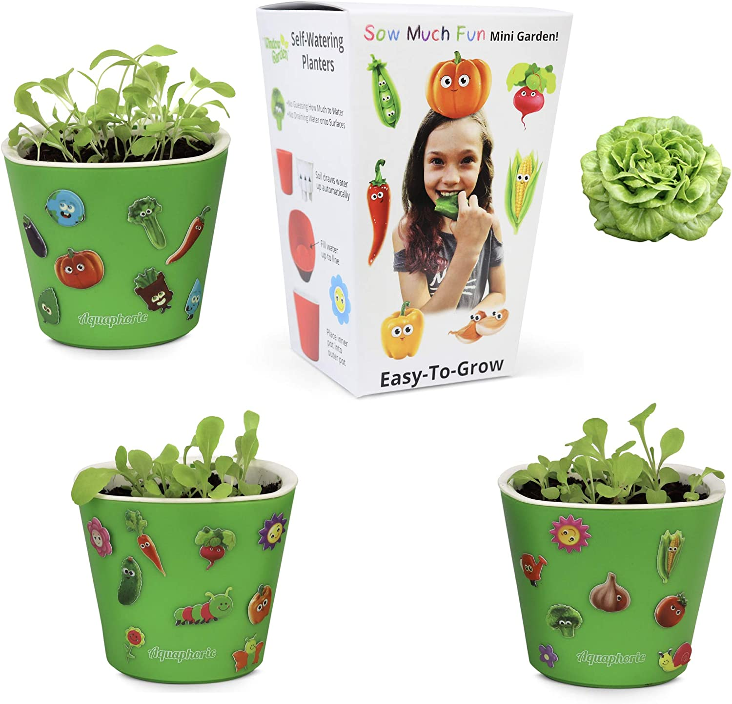 Window Garden Sow Much Fun Seed Starting, Vegetable Planting and Growing Kit for Kids, 3 Self Watering Planters, Soil, Seeds and Puffy Stickers. No Mess, Easy, Works Great! (Buttercrunch Lettuce)