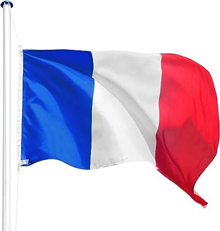 TecTake Mástil para Bandera 6,25 m con Bandera y Cuerda Palo asta Aluminio - Varios Modelos - (Francia | no. 402618): Amazon.es: Hogar