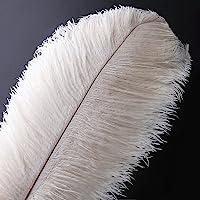 Pluma de la pluma de la avestruz natural