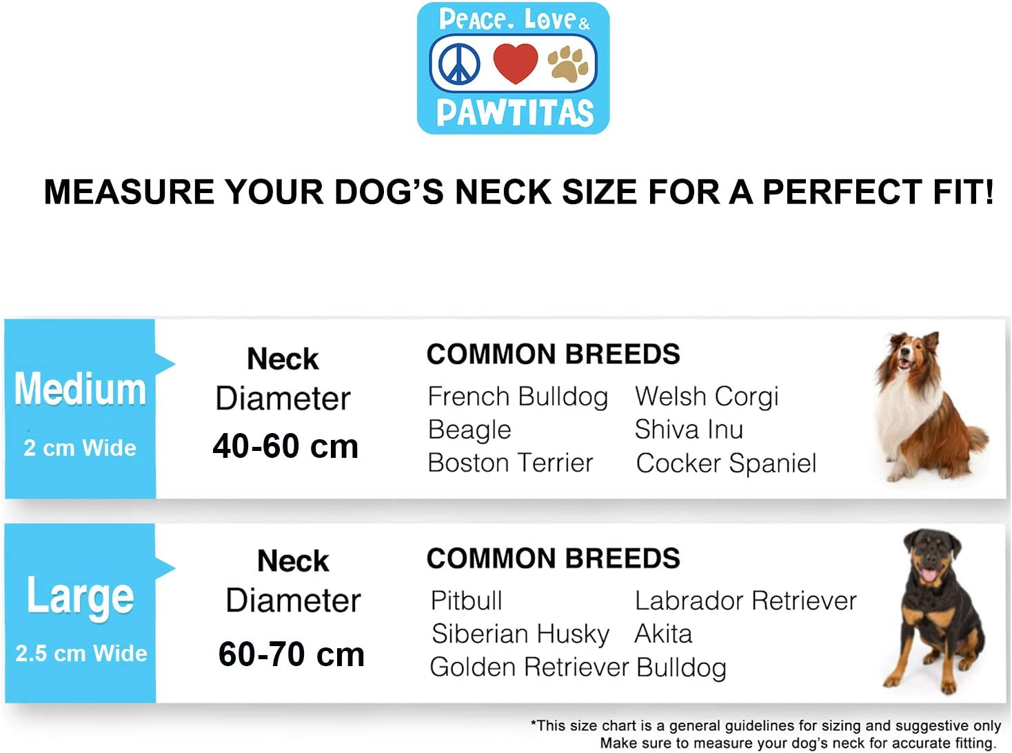 Pawtitas Collar de Perro de Cadena Martingale Reflectante Collar para obediencia Talla Mediana Color Azul