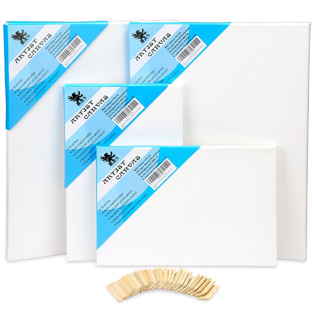 H & S–Set di 4Artist Blank telaio tela olio acqua pittura acrilica, formato 20x 3030x 40 H and S Alliance UK Ltd
