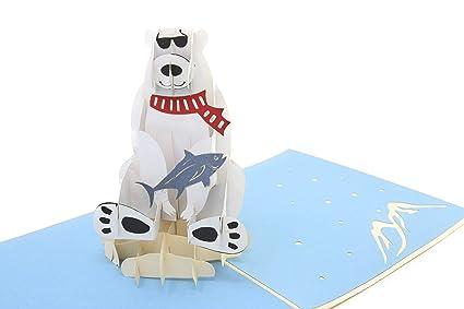 Amazon Poplife Polar Bear Fish Animal Pop Up Card For All
