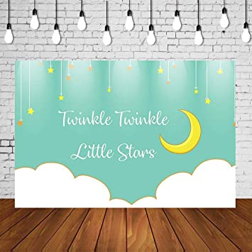 Custom Party Backdrop Twinkle Twinkle Little Star Baby Shower Backdrop Teal Photo Backdrop- Baby Shower Party Backdrop Photo Backdrop