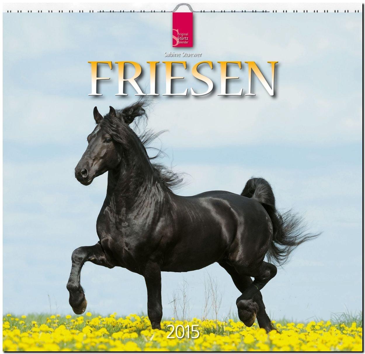 Friesen 2015 - Original Stürtz-Kalender - Mittelformat-Kalender 33 x 31 cm
